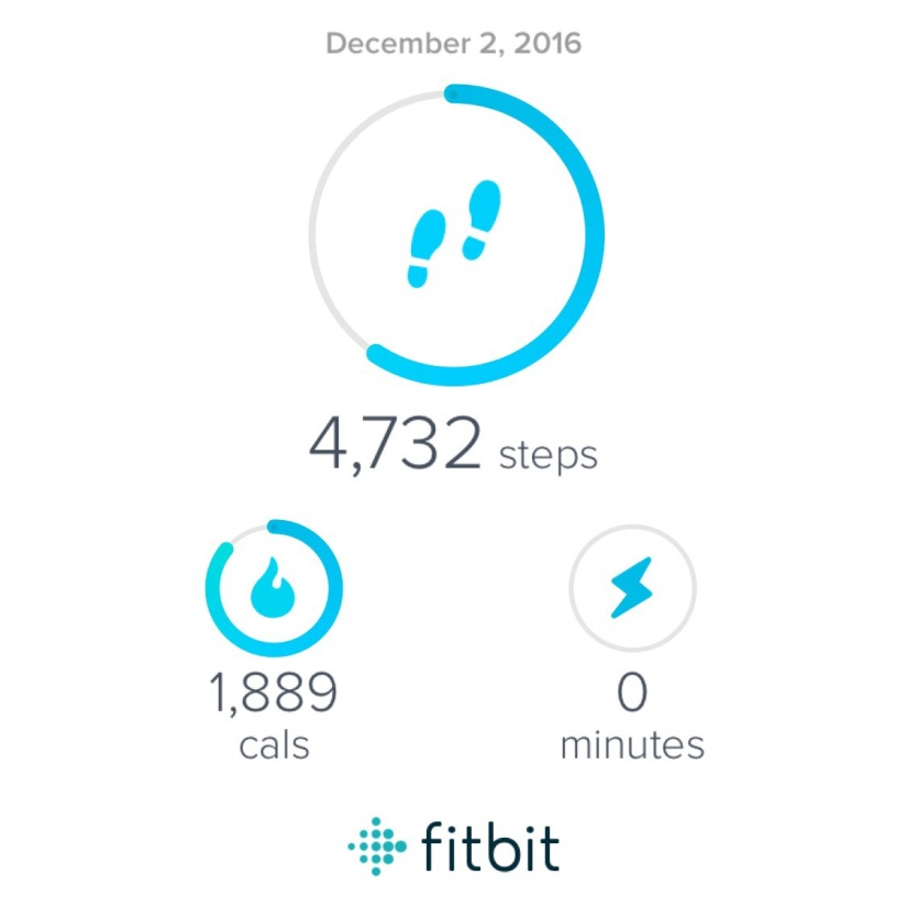 Fitbit Track Day1